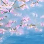 Beitragsbild Kirschblueten